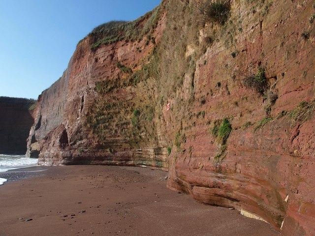 Cliffs, Hollicombe Beach