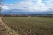 Farmland and view