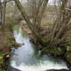 Stream at Shortbridge