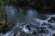 Waterfall at Forditon
