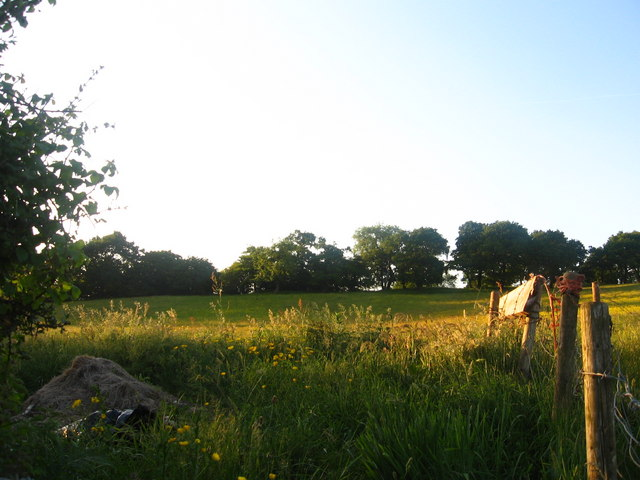 Golden Evening on Lodge Hill