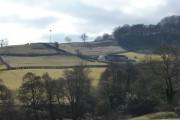 Round Meadow Farm and wind turbine