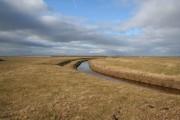 Farmland near Pilling Marsh