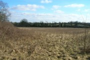 Farmland East of the B684