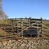 Cattle Pen by the Field Gate