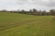 Farmland near Calverton