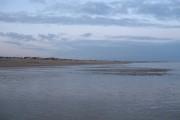 Low Tide, Pevensey Bay