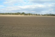 Farmland near Allamoor Farm