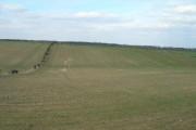 Farmland near Cottage Farm
