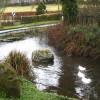 Duck pond in Venterdon
