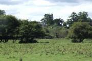 View of Bramford Speke Church from Stoke Canon