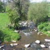 Umborne Brook, Colyton