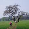 The track to Ettington Park