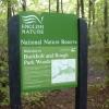 Buckholt Woods