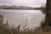 New Hythe Lake