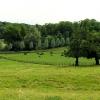 Farmland near Bibury