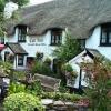 Cott Inn - Dartington