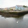 Killyleagh Harbour