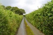 Devon small road
