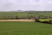 Thickthorn Down towards Gussage Down