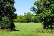 Farmland near Avoca Farm: Whitchurch-on-Thames