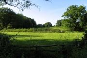 Field near Tadley Hill