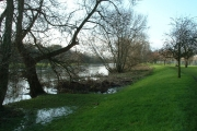 The River Stour at Wimborne Minster