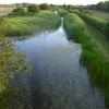 Grantham Canal near Stathern