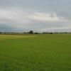 Farm land near Burtonwood.