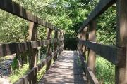 Footbridge over Fowey