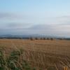 Farm scene near North Tawton