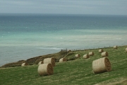 Hay bales and seascape - Isle of Man