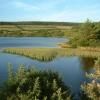 Kionslieu Reservoir - Isle of Man
