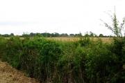Low Farm, Ganstead