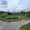 Common land at Pentre Halkyn