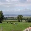 Halkyn farmland