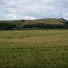 Farmland and A90, Dalmeny