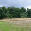 Stubble field, Dalmeny.