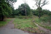 Long Lane Woods, Croydon