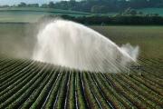 Irrigating fields SW of Killerton Estate (NT)