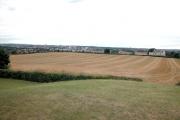 Sandal Magna Farmland