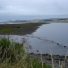 Cromarty Firth on Dingwall signed walk