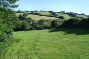 Field near Beenleigh - Harbertonford