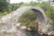 Old Pack Horse Bridge, Carrbridge