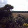 Farmland crossed by footpath near Yelland