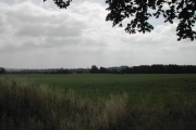 Farmland near Wighay Woods