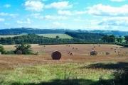Devon farmland