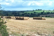 Harvest in at Fishacre Barton