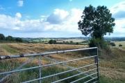 Harvesting at Broadhempston