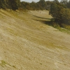 Banked curve of the Brooklands Motor Racing Circuit.